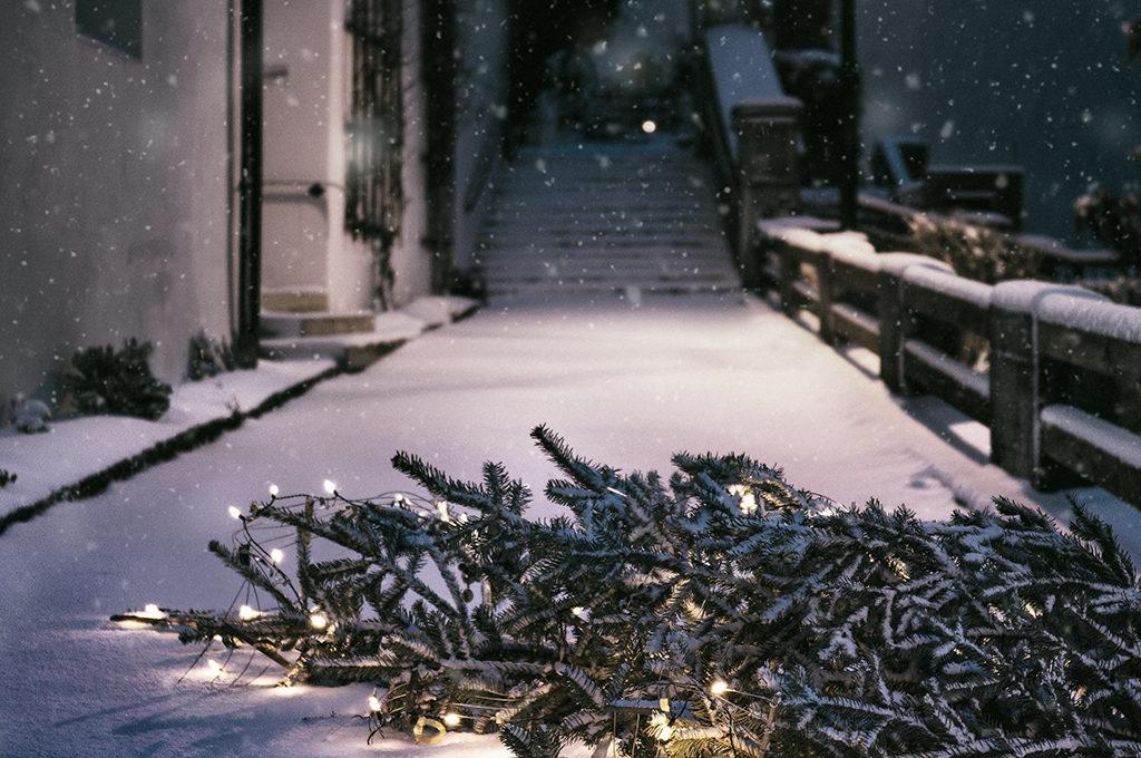 ein Weihnachtsbaum mit Lichtern auf der verschneiten Strasse liegend